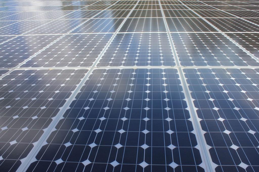 en stor samling almindelige solceller
